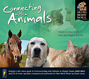 Animal Angels & Connecting with Animals